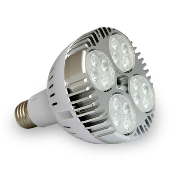 AMPOLLETA PAR30 LED 30W 6000K